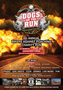 DOGS ON THE RUN @ KWANYONI LODGE
